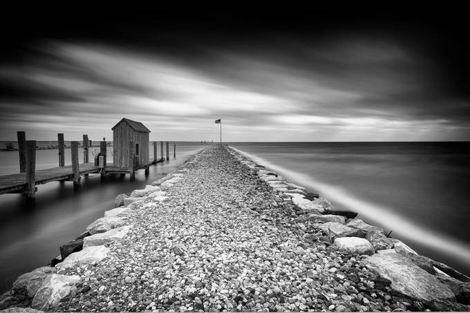 see how the wind blows by dKi_Photography - Monochrome Creative Compositions Photo Contest