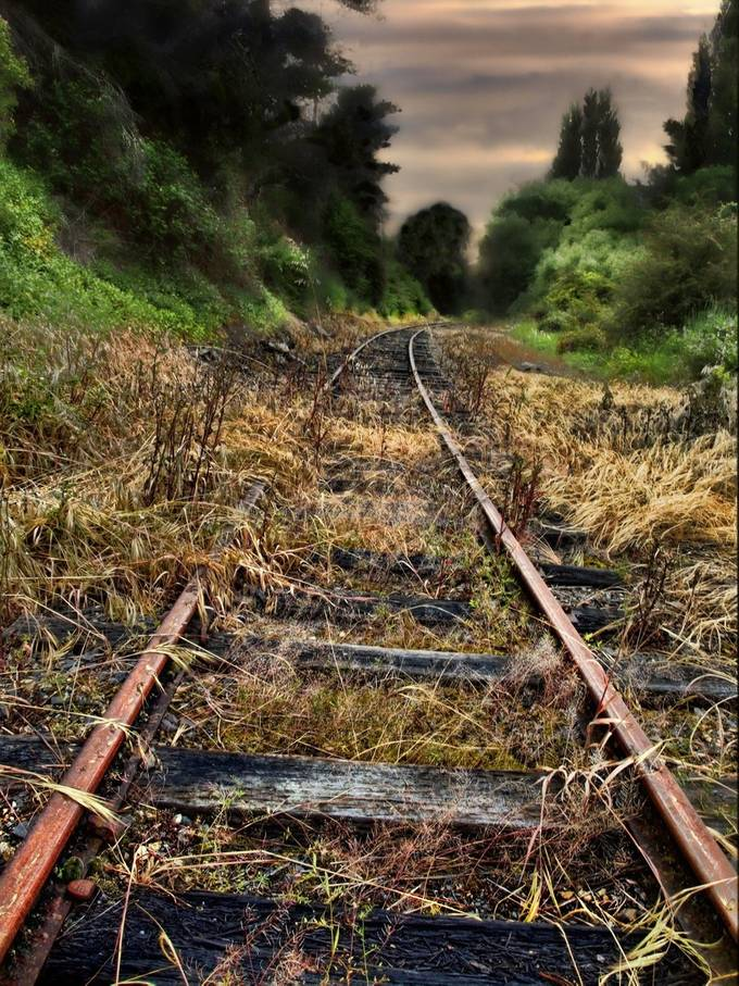 Disused rail line that once carted logs in the Central Highlands of Tasmania.