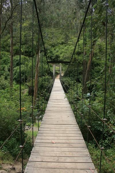 Path Over the Swinging Bridge