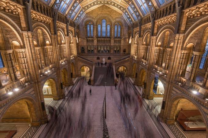 Natural History Museum, London by JayLawler - Iconic Places and Things Photo Contest