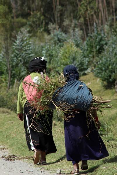 Indigenous Women Walking