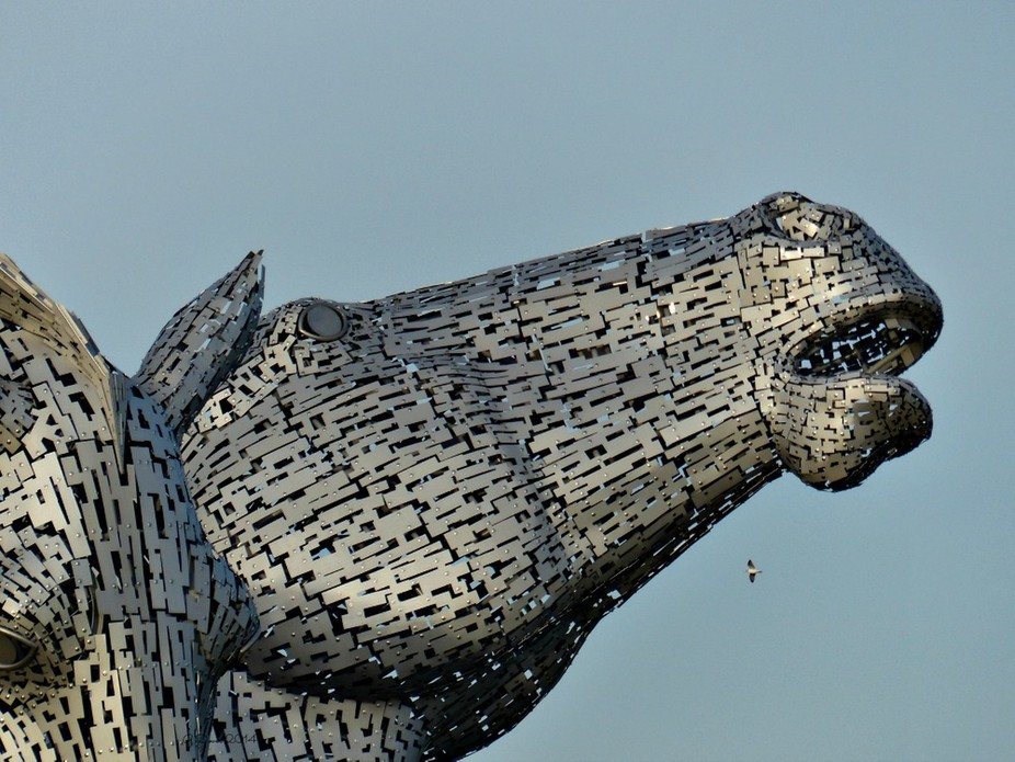 a huge sculpture of two horse heads at Grangemouth