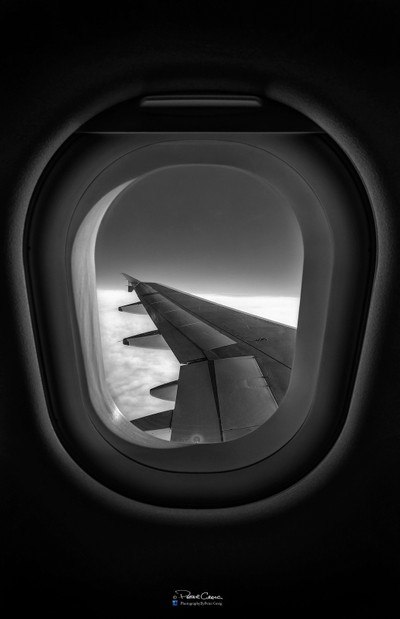 The Wing Seat