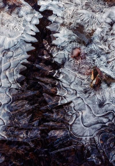 Jurassic ice 2