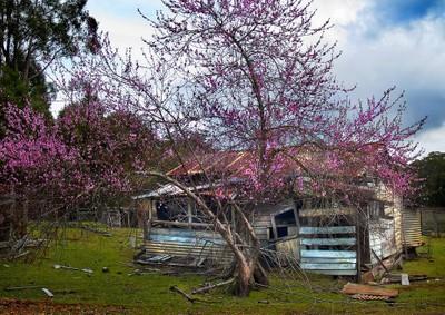 The Hermits Hut