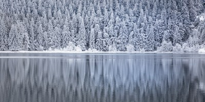 Winter reflection - Reflet hivernal