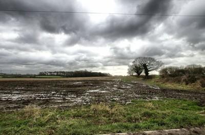 Water logged field