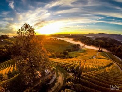Wine roads - Slovenia