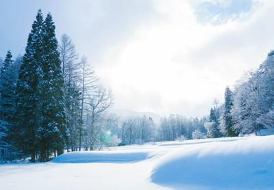 I winter soft