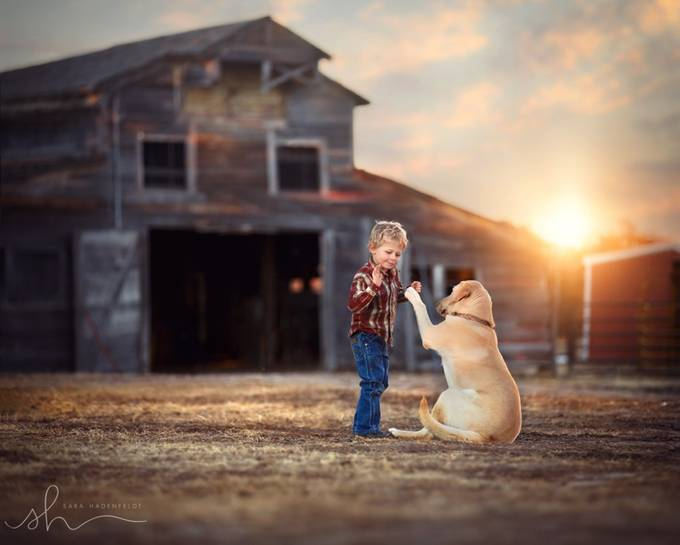 High Five by SaraHadenfeldt - Children and Animals Photo Contest