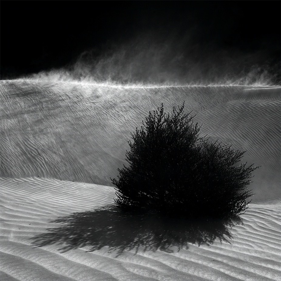 Sand Storm by fineartphotography - Wind In Nature Photo Contest