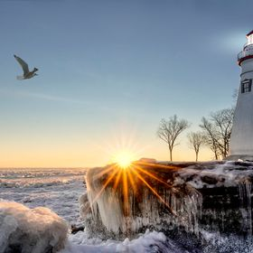 The historic Marblehead Lighthouse in Northwest Ohio sits along the rocky shores of the frozen Lake Erie. Seen here in winter with a colorful sun...