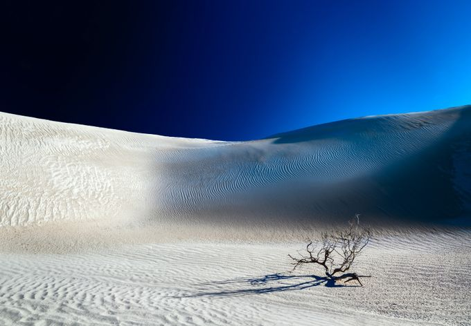 Desert Branch Void by fineartphotography - Visuals of Life Photo Contest