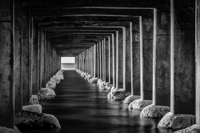 Dromana Pier by duanenorrie - Textures In Black And White Photo Contest
