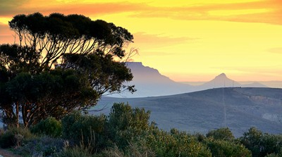 Table Mountain at winter