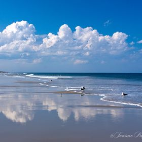 This is one of my favorite photos that I have taken on the beach. I wanted to capture the beautiful fluffy clouds and the reflection of them in t...