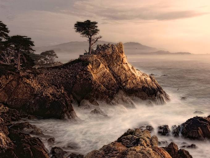 A Somber Cypress by fidfoto - The Magic Of Moving Water Photo Contest