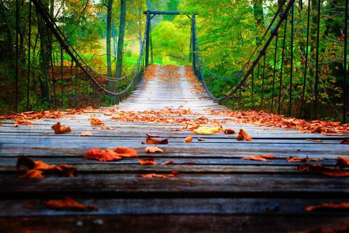 Wooden Suspension Bridge by jmannimages - Stunning POV Photo Contest