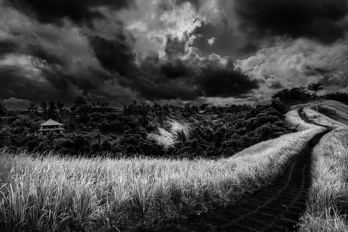 Ridge Walk, Ubud, Bali by fineartphotography - Explore Asia Photo Contest
