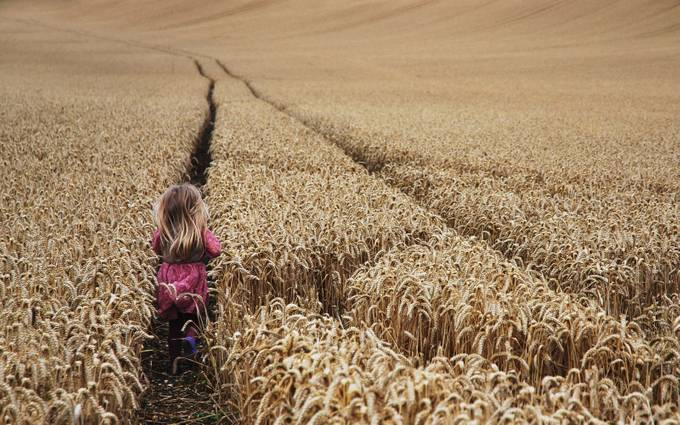 emilka by jolantaziarnik - Lost In The Field Photo Contest