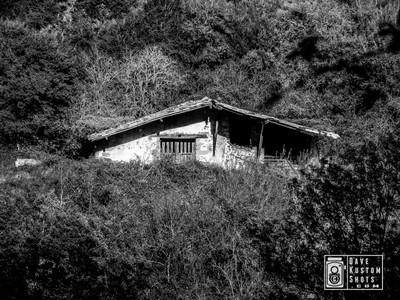Abandoned House - Casa Abandonada