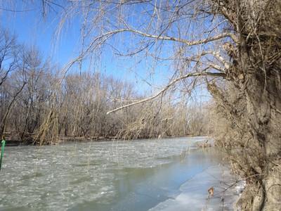 Waterway Frozen View