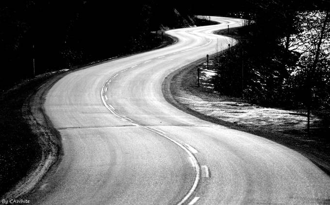 Lake Road by CAW - Twisted Lines Photo Contest