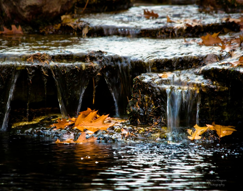 Mesmerizing waterfall with autumn leaves