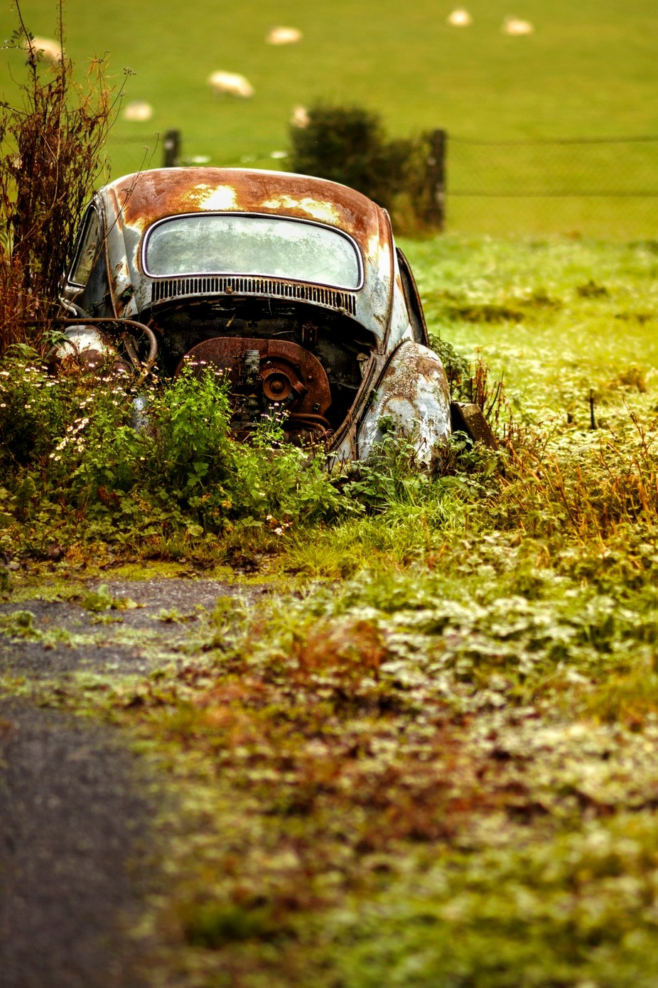 once upon a time car by MishaMaricPhotography - Once Upon A Time Photo Contest