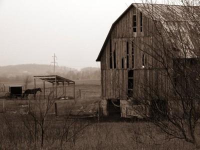 Amish Way of Life