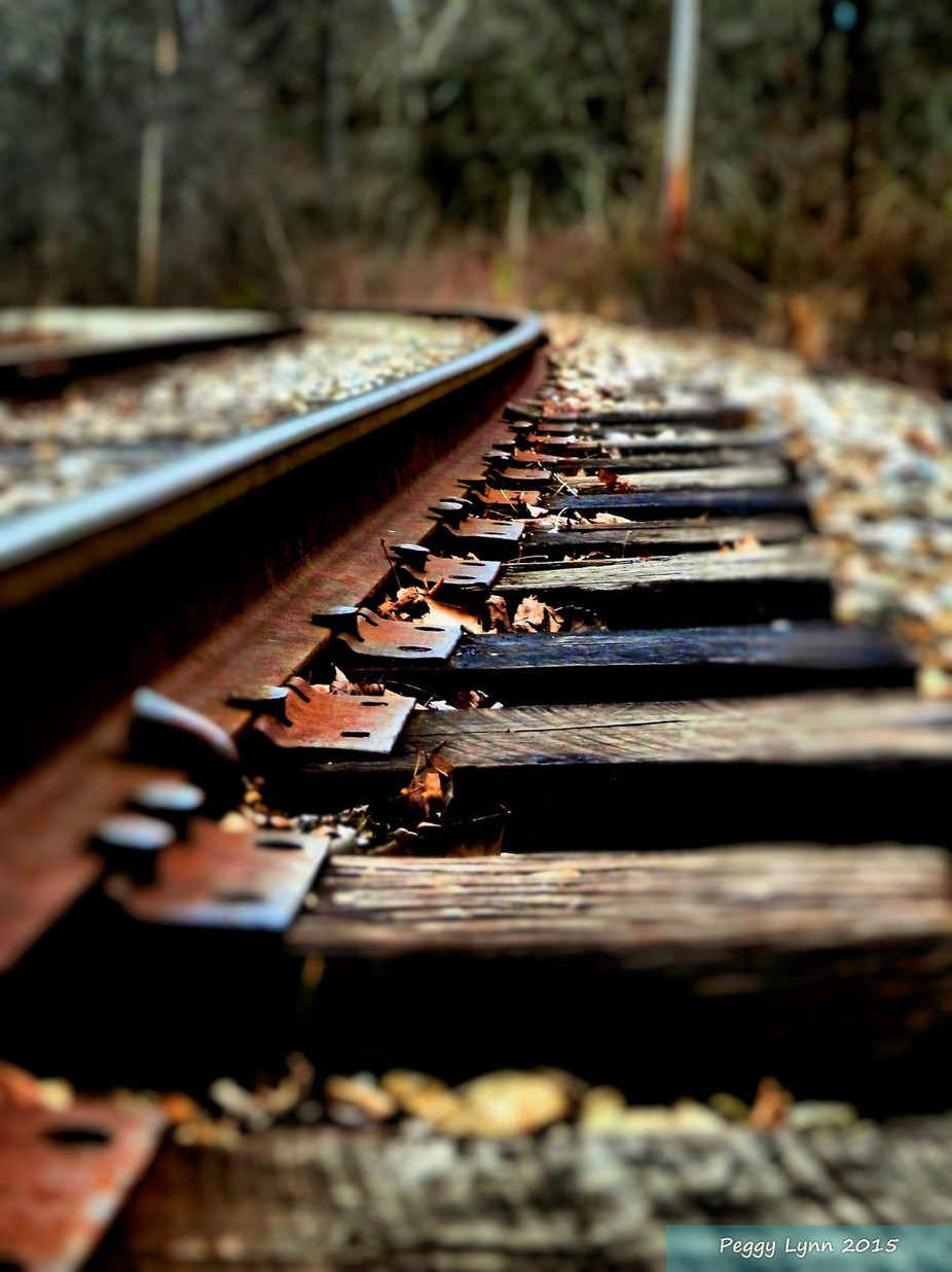 On a Rail by A_New_Journey - Empty Railways Photo Contest