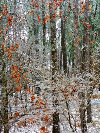 Icicles in SC