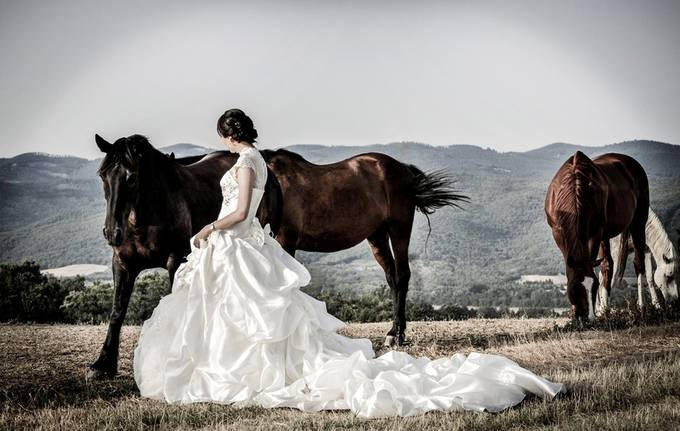 Portrait Bride with horses by Travelshooter - Beautiful Brides Photo Contest