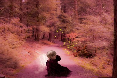 The Path towards Fairyland. Avalon in Magicland series