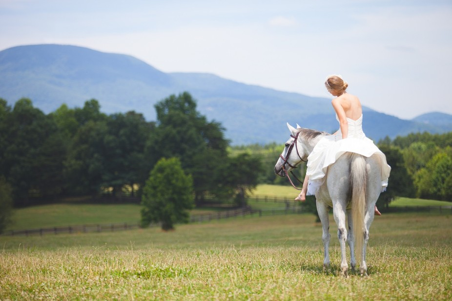 One of my favorite weddings, the next day the lovely bride wanted photos on her horse. Dream come...