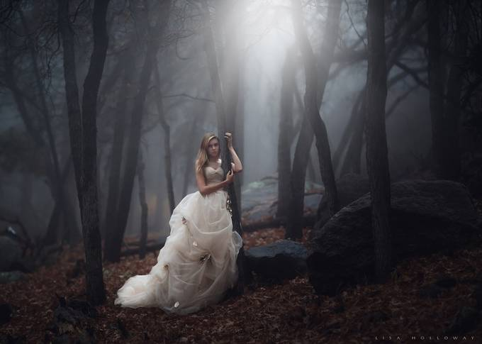 Forest of Mysteries by lisaholloway - Beautiful Brides Photo Contest