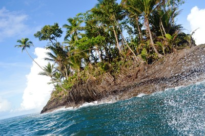 Rock Islet and Coconuts