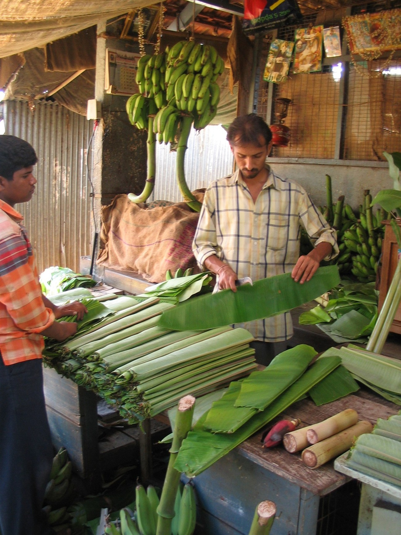In India every part of the banana tree is used .... bananas ... obvious; leaves .... laid flat and used as a plate, which is folded up at the end and fed to cows; flowers ... made into a very delicious vegetarian dish; stalks ... also made into a delicious preparation.