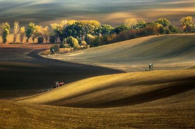 Autumn fields...