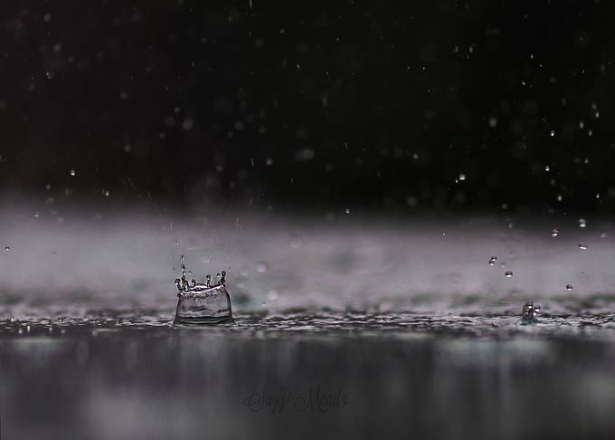 Splish Splash by suzymead - Rain Photo Contest