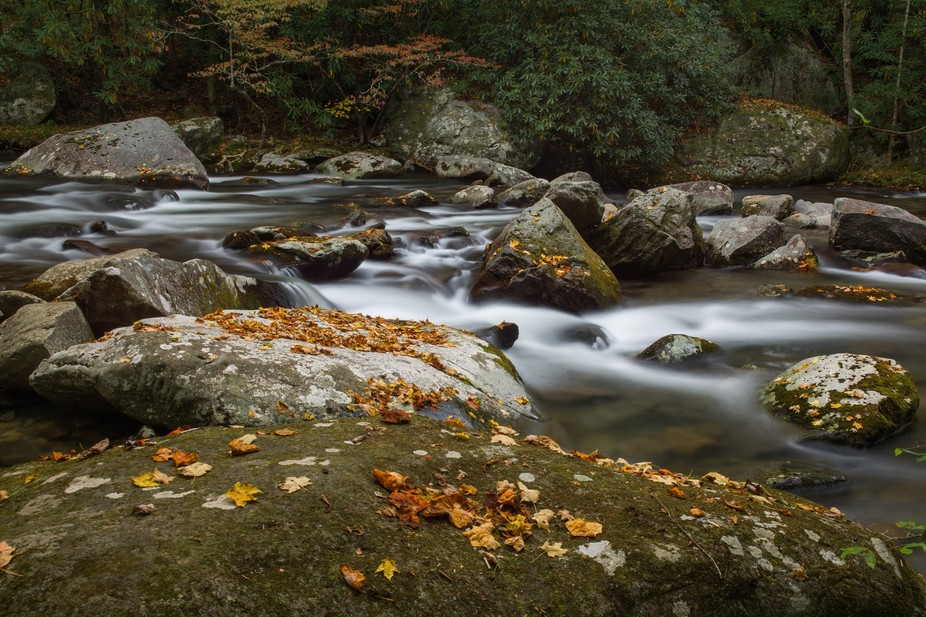 Middle Prong Of The Little River at Great Smoky Mountains