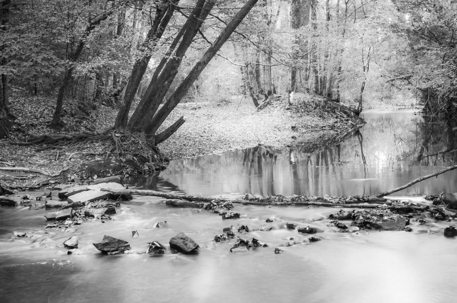 fall creek bw