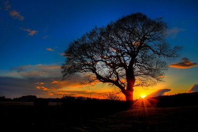 sunset shefford
