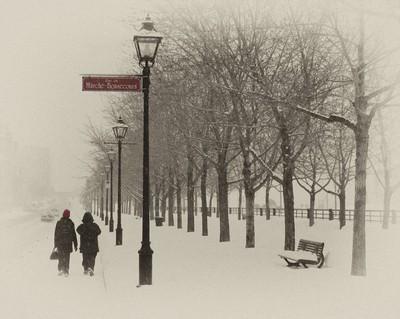 Montreal Mist