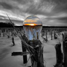 Creative shot in the meadows of Farmington, CT. Bulb placed on existing corn stalk in winter.