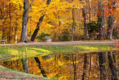 Fall 2014 Reflection in Pond-2320