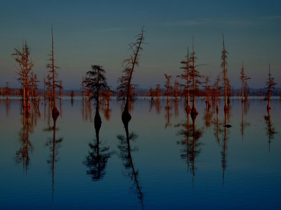 Pre Dawn at Duck Creek Pool 1