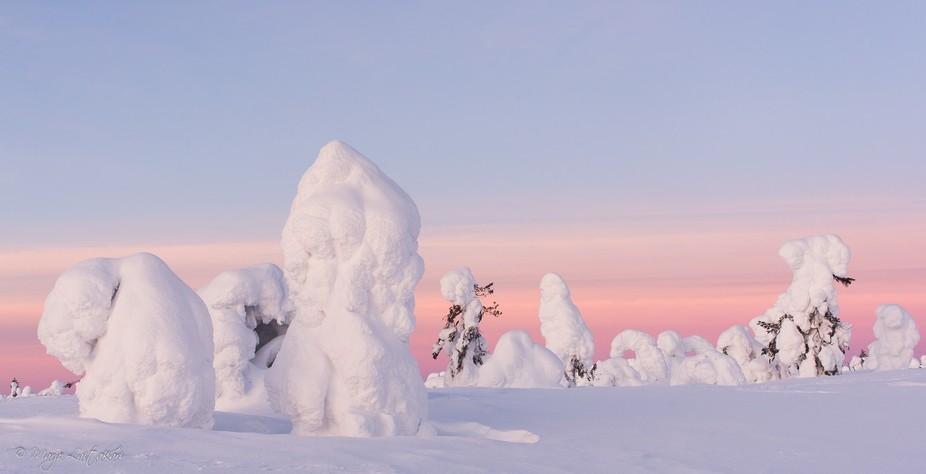 Riisitunturi National Park, Posio, Lapland, Finland