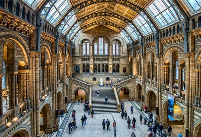 Natural History Museum Part 1