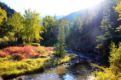 Bear Creek (edited)